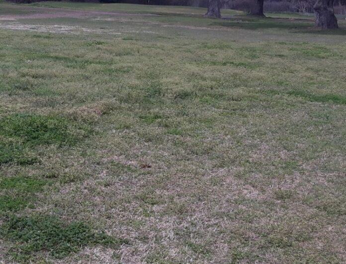 Real Estate Listings - Eagle Lake TX